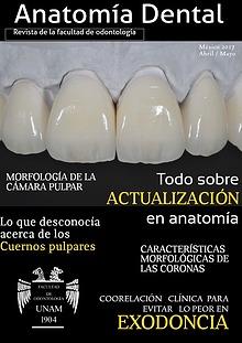 Anatomía Dental