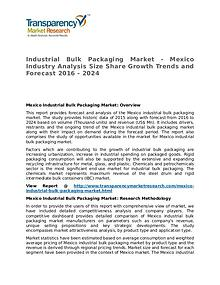 Industrial Bulk Packaging Market Research Report and Forecast