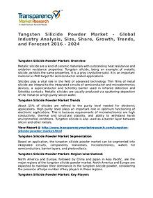 Tungsten Silicide Powder Market 2016