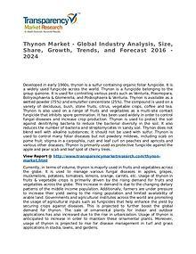Thynon Market 2016 Share, Trend, Segmentation and Forecast to 2024