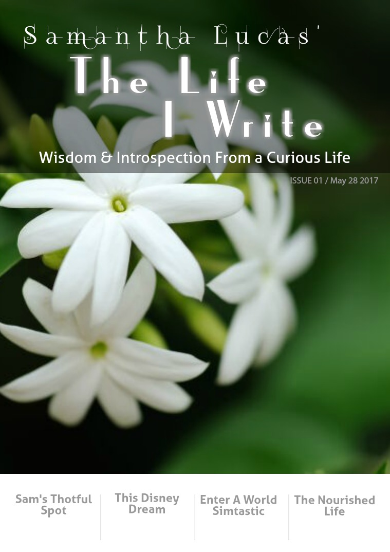 The Life I Write Issue 1