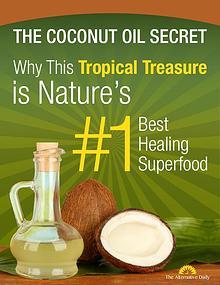 The Coconut Oil Secret PDF / Book