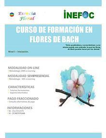 CURSO DE FLORES BACH NIVEL 1