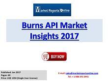 Global Burns API Market Overview Report 2017