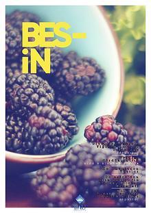 BES-İN Dergisi