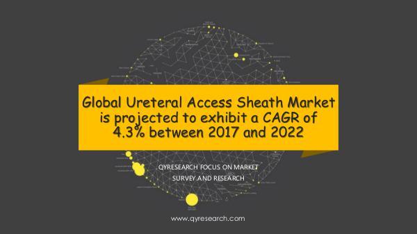 QYR Market Research Ureteral Access Sheath Market Research Report
