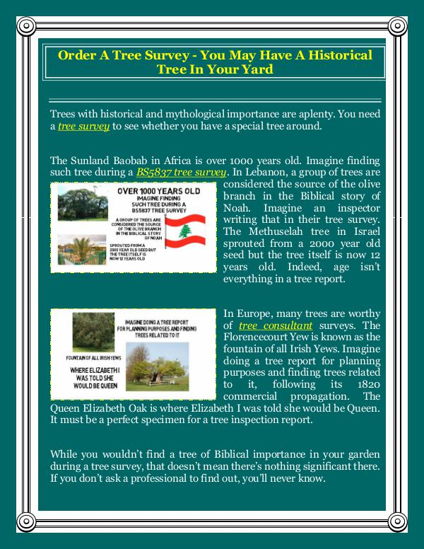 Order A Tree Survey - You May Have A Historical Tree In Your Yard Order A Tree Survey - You May Have A Historical Tr