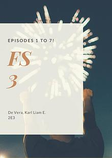 FS3 Portfolio