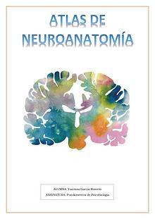 Atlas de Neuroanatomía