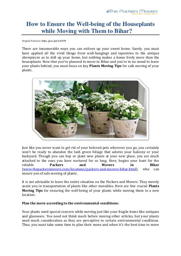 How to Ensure the Well-being of the Houseplants while Moving How to Ensure the Well being of the Houseplants wh