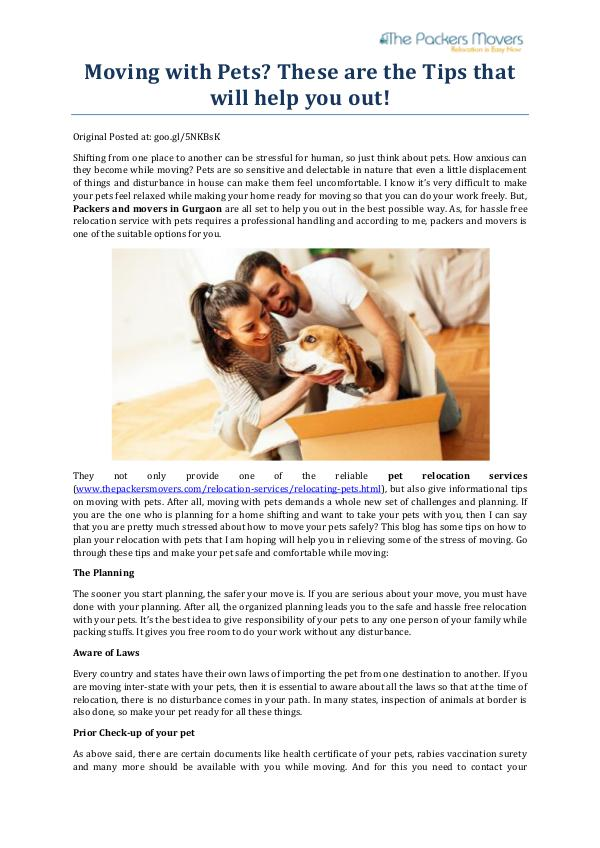 My first Magazine Moving with Pets These are the Tips that will help