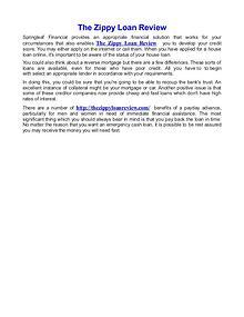 The Zippy Loan Review