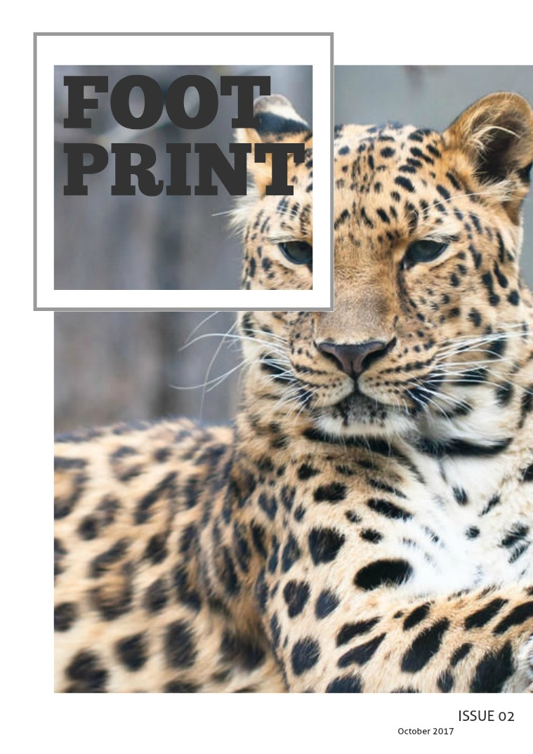 Footprint Magazine 2 - Conservation