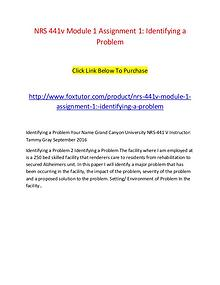 NRS 441v Module 2 Assignment 2; Incorporating Theory (Version 2)