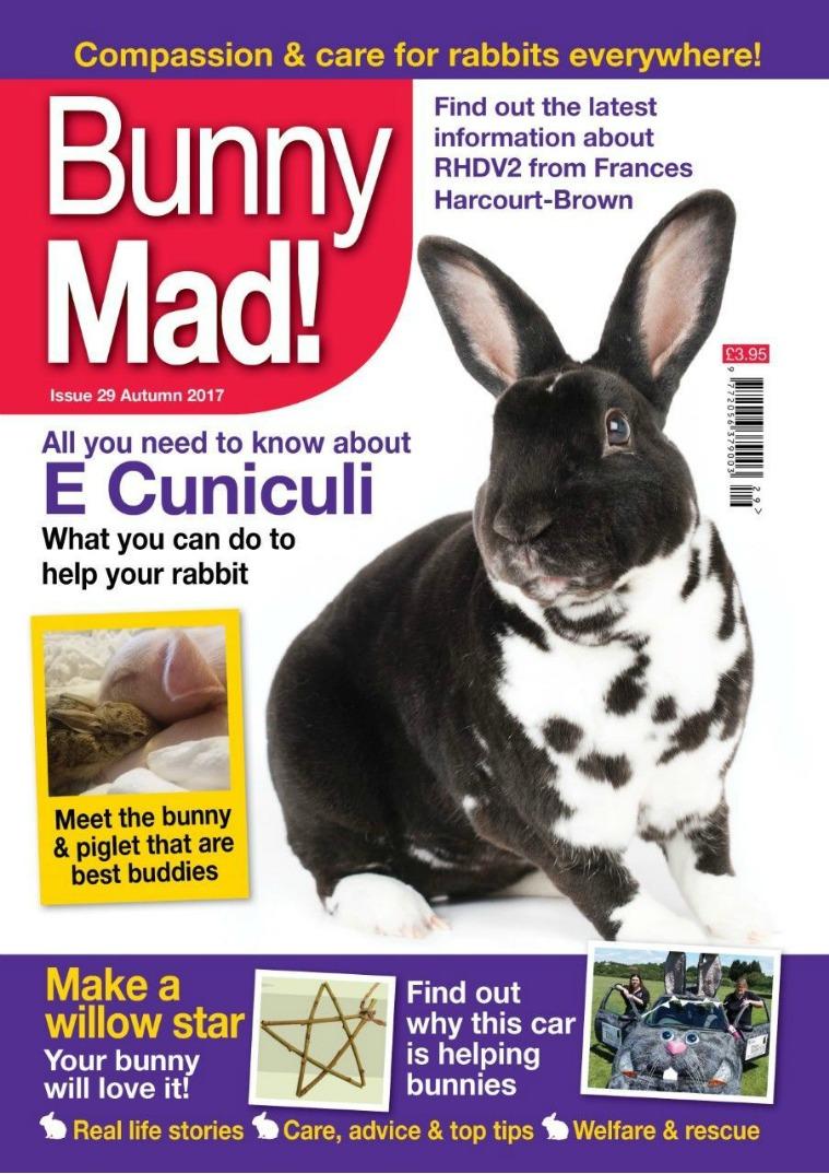 Bunny Mad! Issue 29 joomag