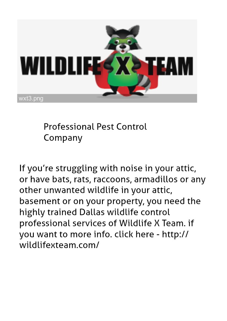Professional Pest Control Company Critter Removal