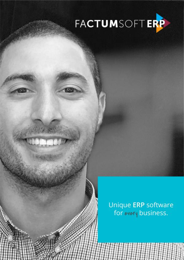Factumsoft ERP Catalog