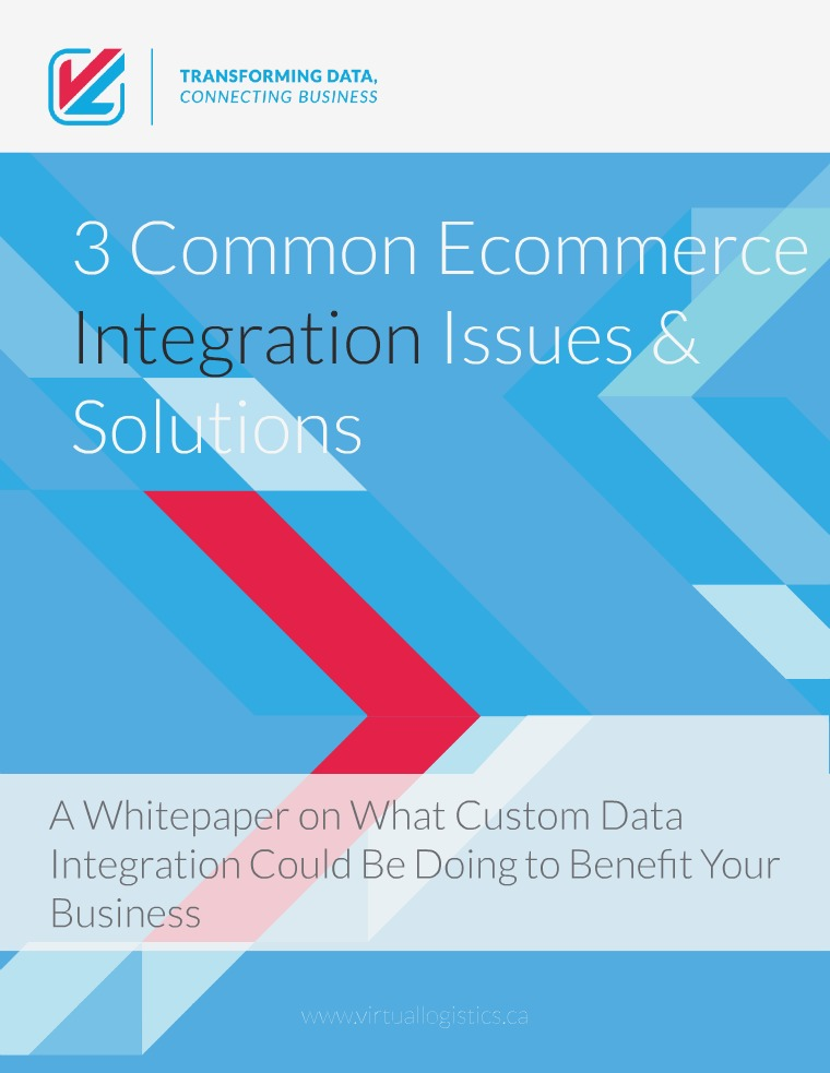 VL OMNI Resources An Ecommerce Whitepaper(clone)