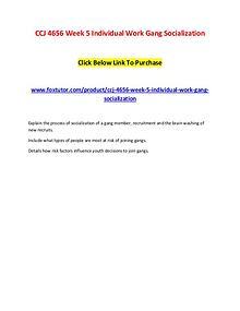 CCJ 4656 Week 5 Individual Work Gang Socialization