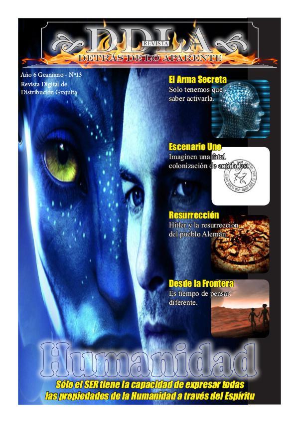 DDLA_Revista Nº13