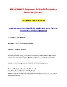CIS 502 WEEK 6 Assignment 2 Critical Infrastructure Protection (2 Pap