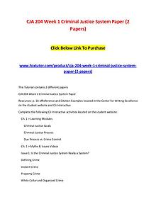 CJA 204 Week 1 Criminal Justice System Paper (2 Papers)