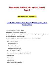 CJA 204 Week 1 Criminal Justice System Paper (2 Papers)