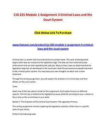 CJA 225 Module 1 Assignment 3 Criminal Laws and the Court System