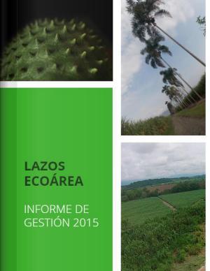 Informe de Gestión Lazos 2015