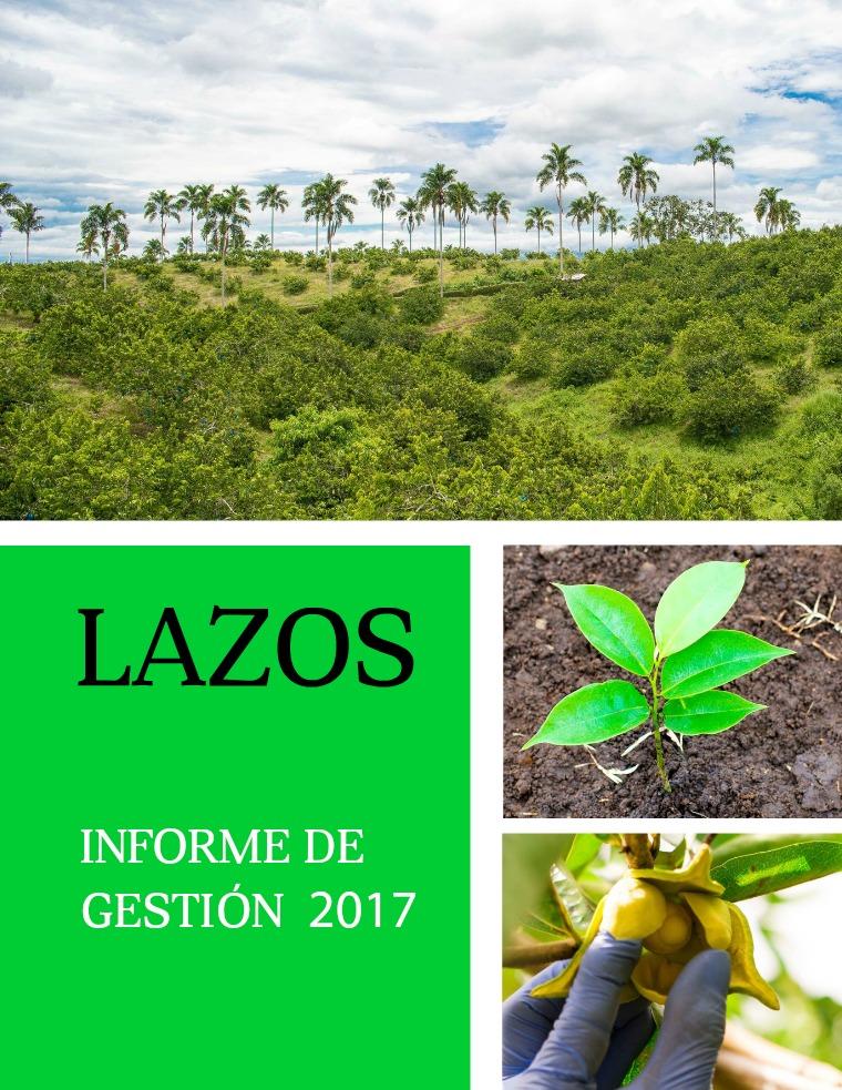 Informe de Gestión Lazos 2017