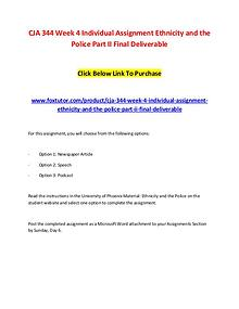 CJA 344 Week 4 Individual Assignment Ethnicity and the Police Part II