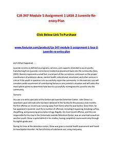 CJA 347 Module 5 Assignment 1 LASA 2 Juvenile Re-entry Plan