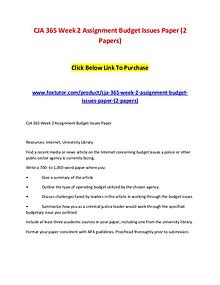CJA 365 Week 2 Assignment Budget Issues Paper (2 Papers)