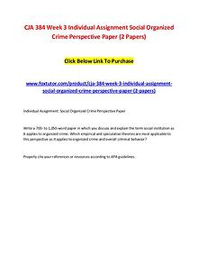 CJA 384 Week 3 Individual Assignment Social Organized Crime Perspecti