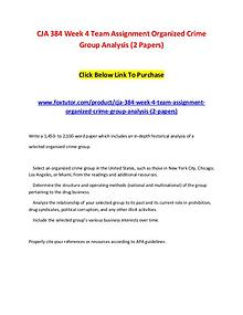 CJA 384 Week 4 Team Assignment Organized Crime Group Analysis (2 Pape