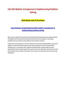 CJA 425 Module 2 Assignment 2 Implementing Problem-Solving