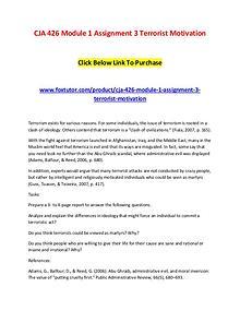 CJA 426 Module 1 Assignment 3 Terrorist Motivation