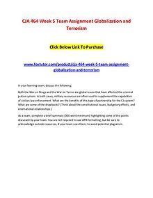 CJA 464 Week 5 Team Assignment Globalization and Terrorism