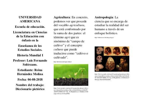 Diccionario pictorico Diccionario Pictorico HMI