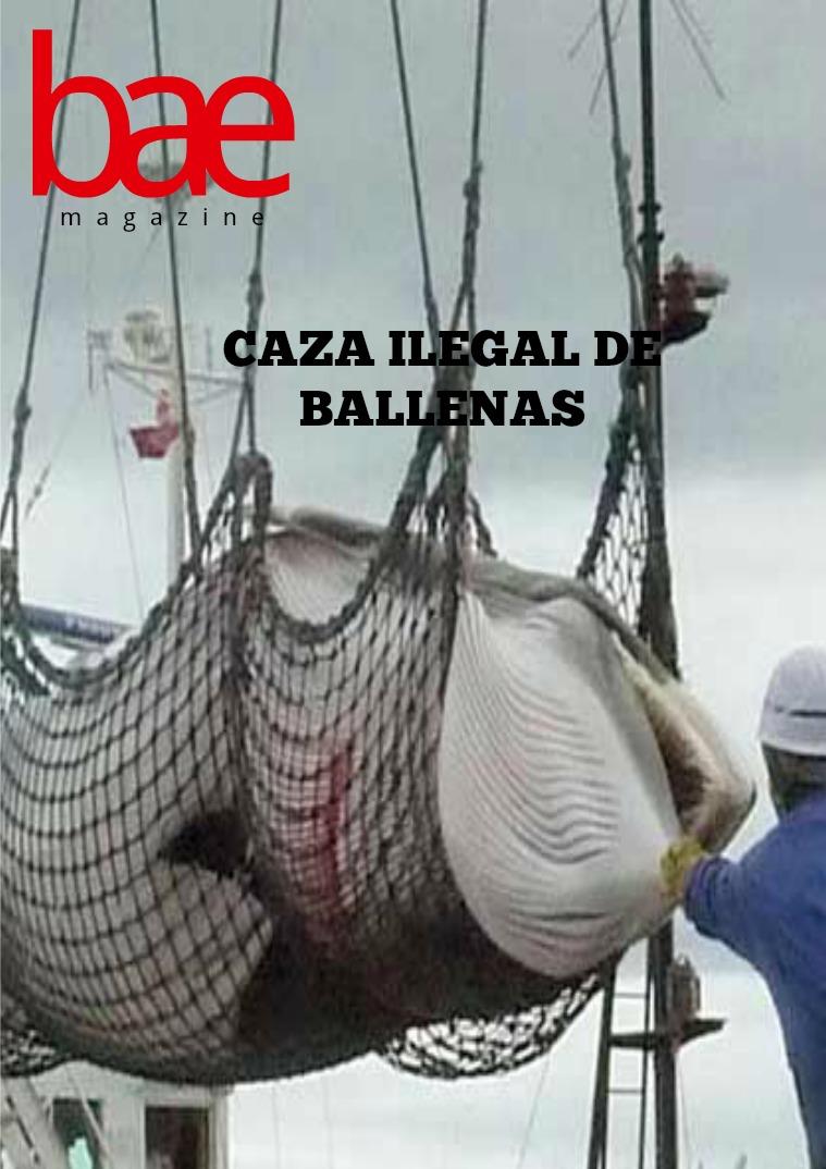 Caza ilegal de ballenas Caza ilegal