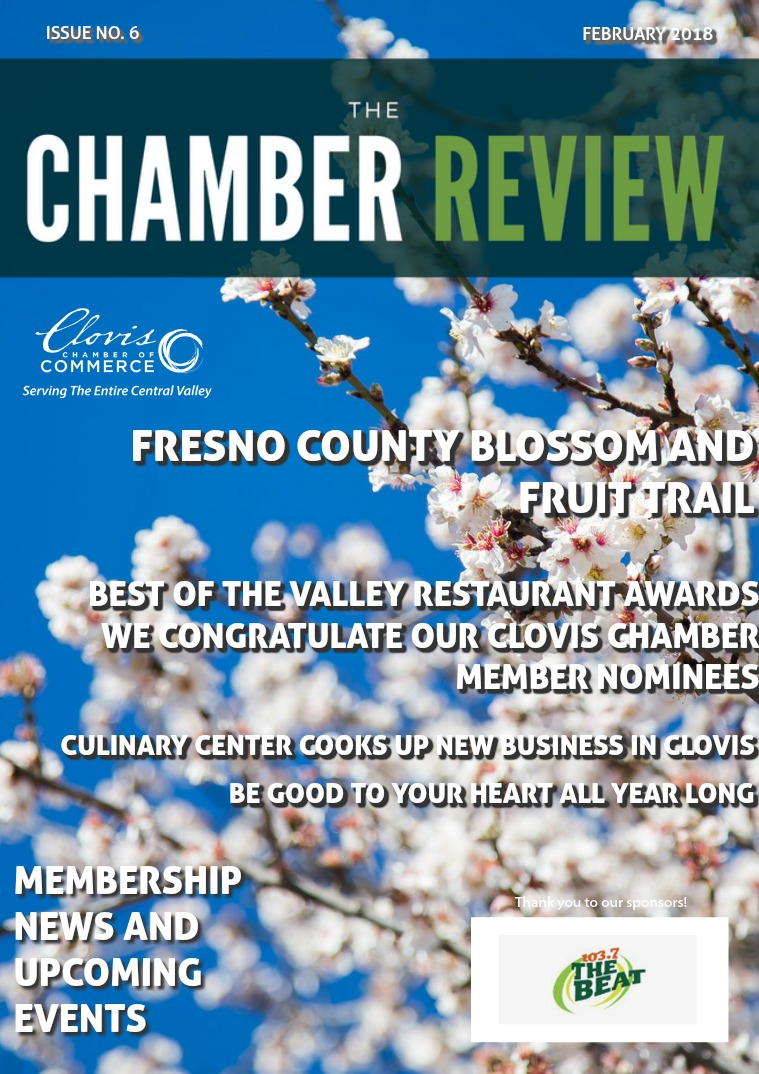 The Chamber Review February 2018