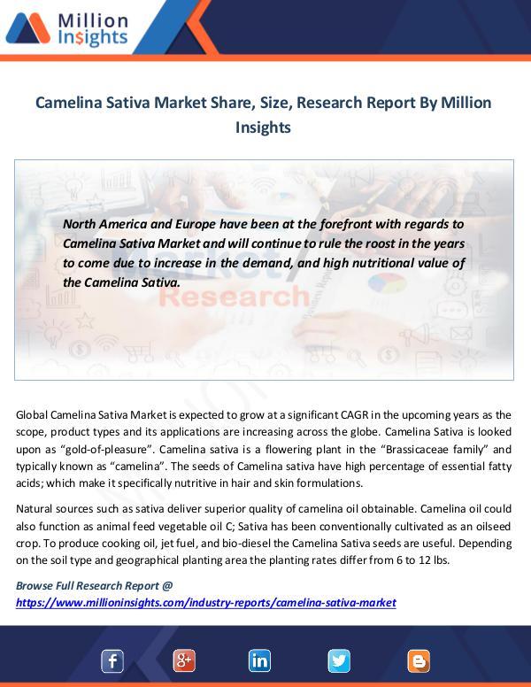 Market News Today Camelina Sativa Market