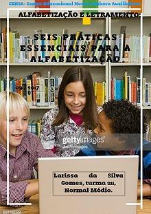 Seis práticas essenciais para a alfabetização (211)
