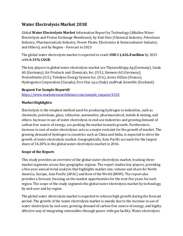 Water Electrolysis Market Research Report - Global