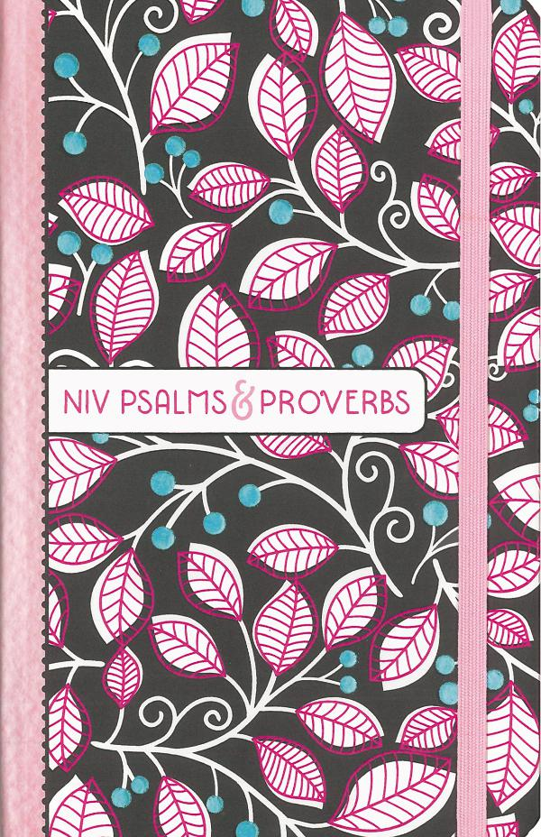 NIV Psalms & Proverbs 9780310765776_NIVPsalmsProverbs_sampler
