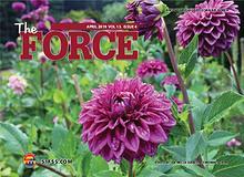 The Force Magazine, Osan AB