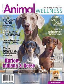 Animal Wellness Magazine
