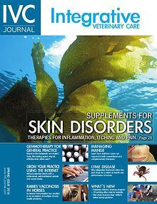 IVC Journal