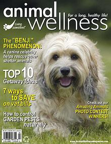 Animal Wellness Magazine