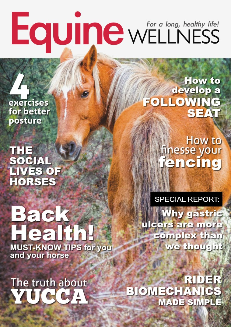 Equine Wellness Magazine Oct/Nov 2018